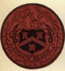 Seal2_1871.jpg